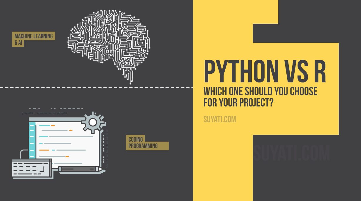 guide-to-languages-python-and-r