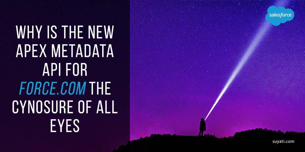 Apex metadata API