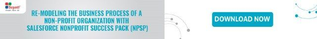 Re modeling business process NPSP
